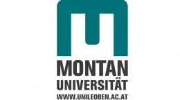 Leoben Univ Logo for web